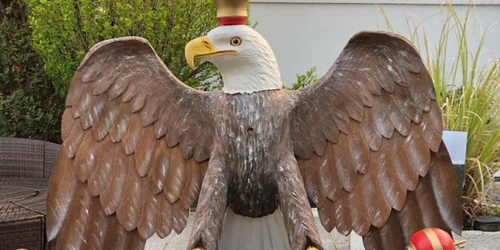 Kaiservogel 2019